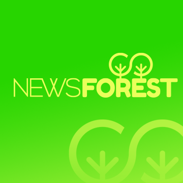 First Post in Newsforest